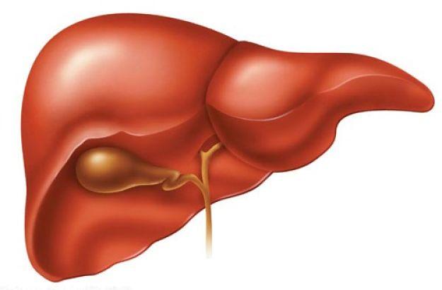 Chế độ ăn uống phù hợp phòng bệnh gan nhiễm mỡ 1