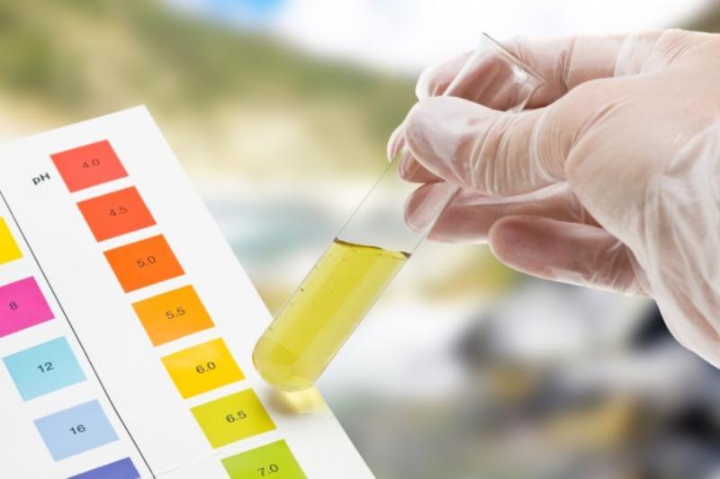 Phương pháp xét nghiệm nước tiểu phát hiện bệnh tiểu đường